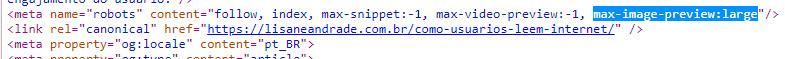 print do código com a marcação max-image-preview:large